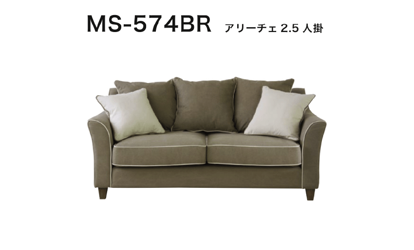 MS-574BR