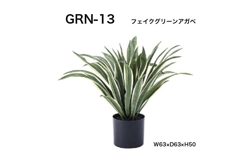 GRN-13