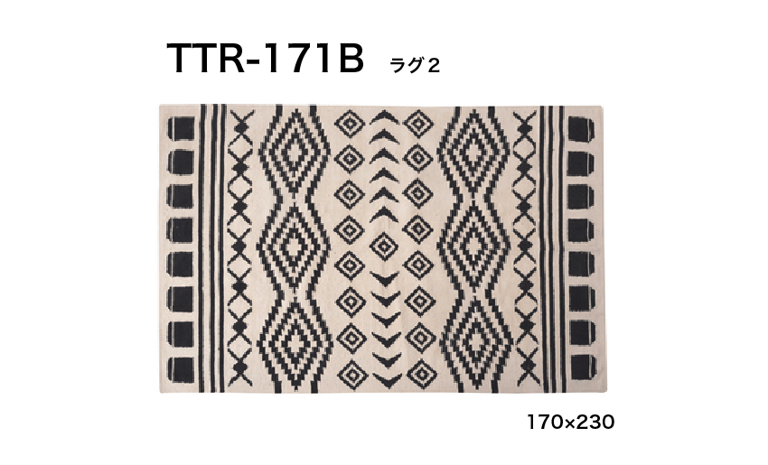 TTR-171B