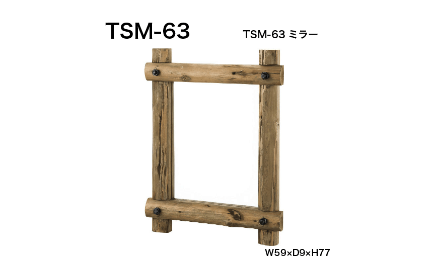 TSM-63